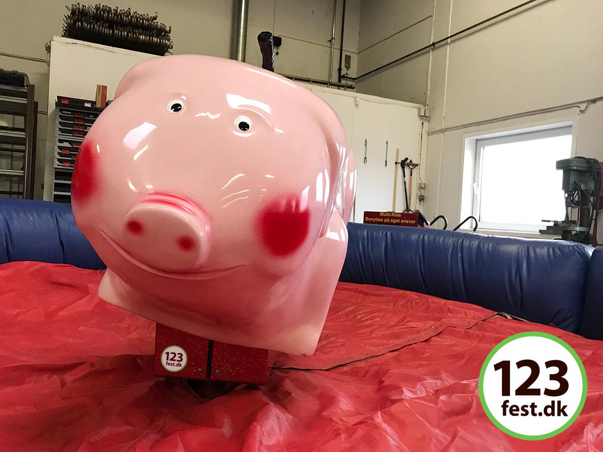rodeo-gris er super sjovt